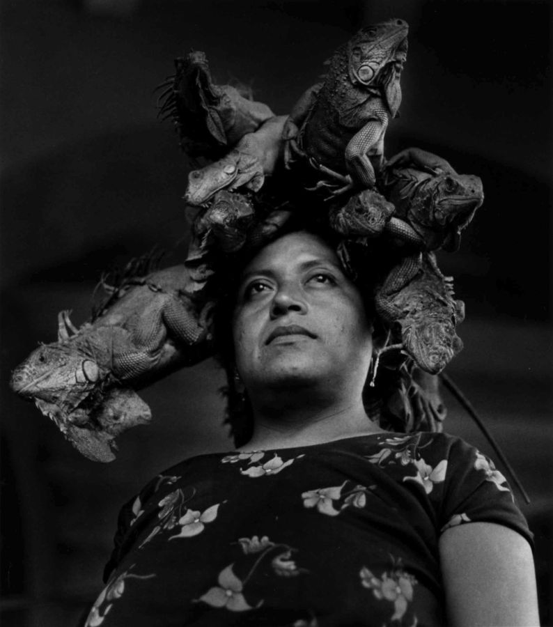 "Graciela Iturbide, ""Our Lady of the Iguanas"""